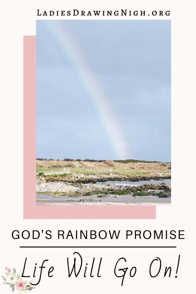 rainbow shoreline
