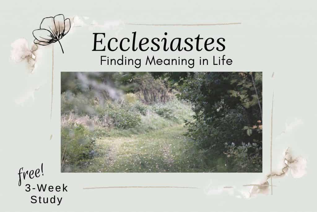 path through flower garden spring trees Ecclesiastes Bible study