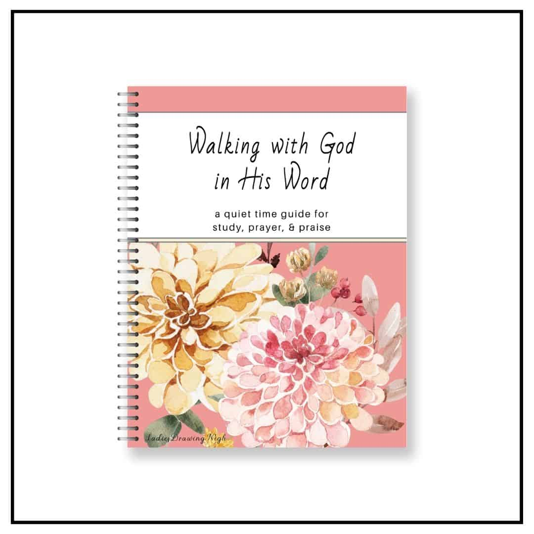 Walking with God Bible Study Journal spiral 2 large flowers