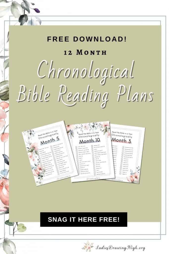 3 Chronological Bible Reading Plans floral border