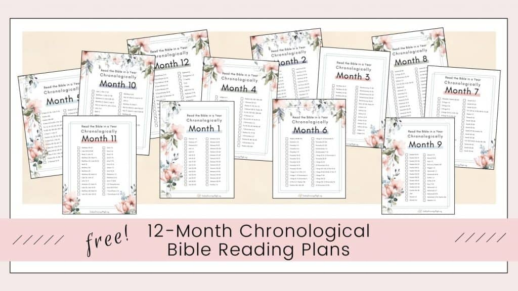Printable Monthly Chronological Bible Reading Plan